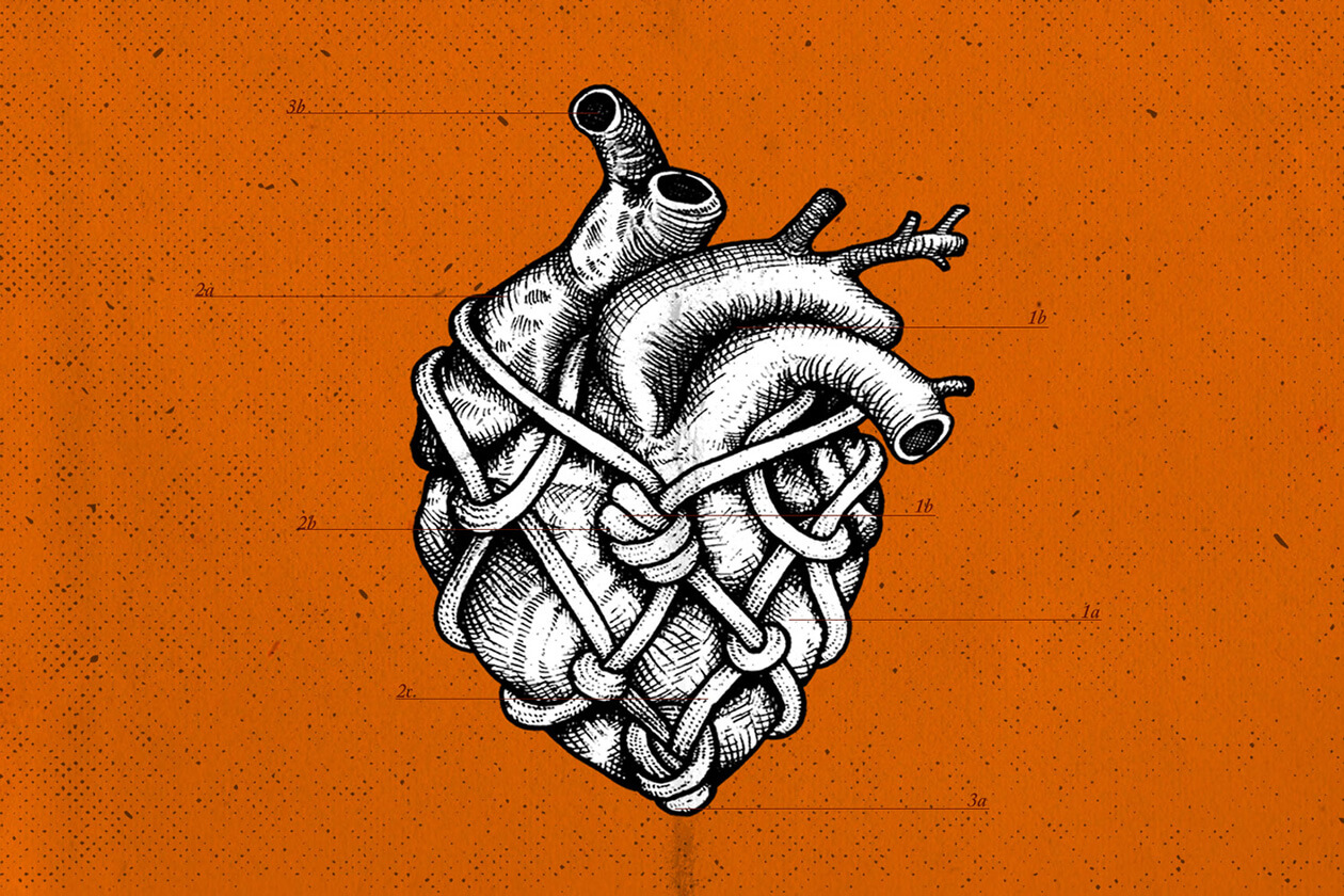 Illustration by Dan Bushnell